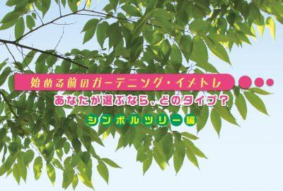 始める前のガーデニング・イメトレ<シンボルツリー編>